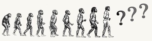 From Ape to Man... Where will the Evolution Lead